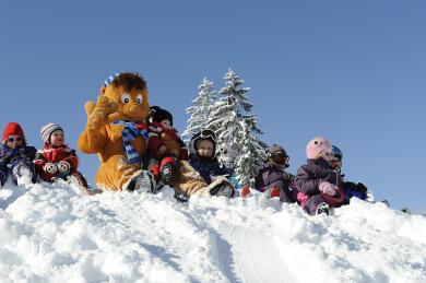 Skigebiet Wagrain, Ski amadé, Salzburger Land