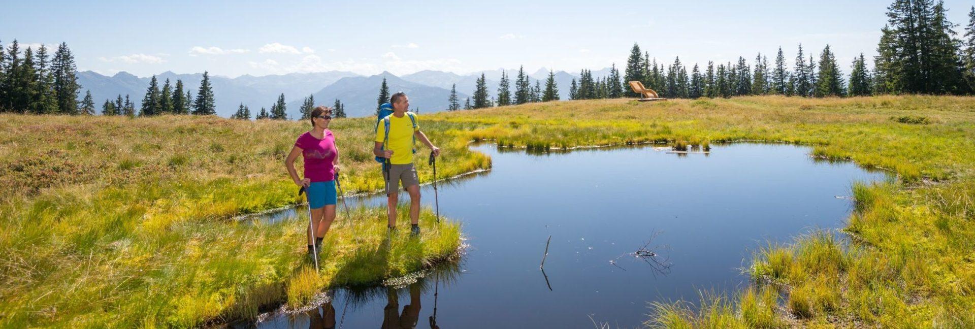 Wandern durch's Hochmoor am Rossbrand und dabei das herrliche Bergpanorama genießen