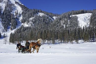 Winterurlaub in Radstadt - Pferdeschlittenfahren